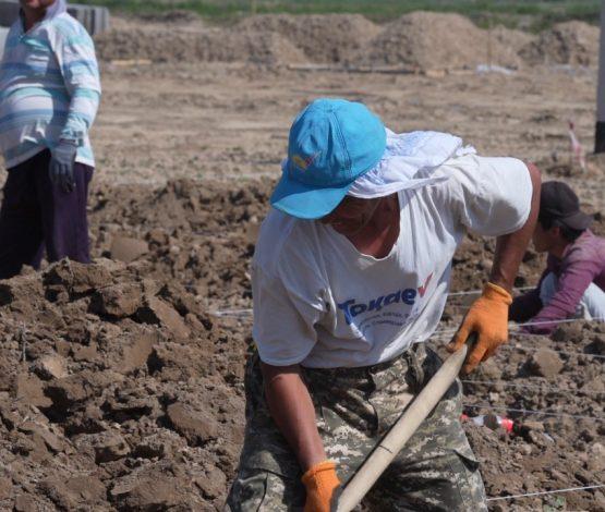 Болат Назарбаев 20 үй салып, 100 отбасыға 100 мың теңгеден бермек
