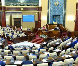 «Парламент өз жұмысын дұрыс атқармаса қоғамда шешілмеген проблема көбейеді»