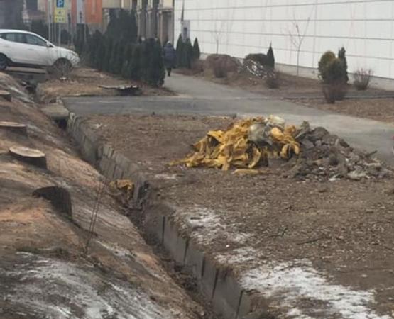 Sulpak кесілген ағаштар үшін қала тұрғындарынан кешірім сұраудан бас тартқан