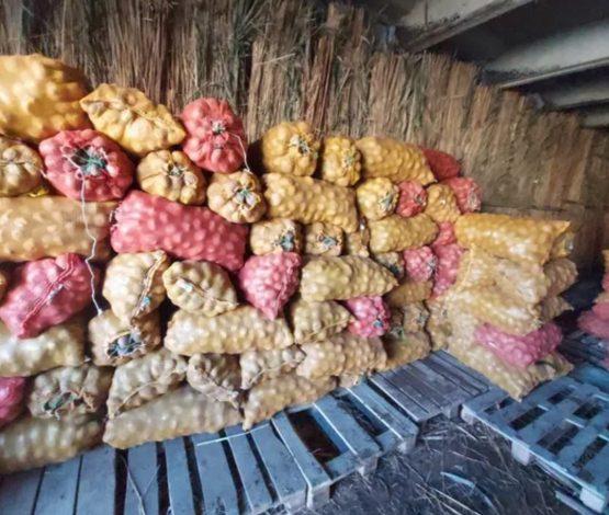 Бір адамға екі келі: Қазақстанда картоп пен сәбіз алуға шектеу қойылды