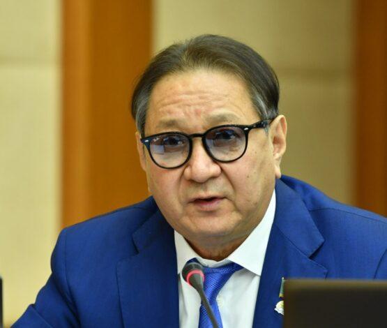 «Бизнесті мазақ етудің бюрократиялық түрі»: Депутат қаржы министрін сынады