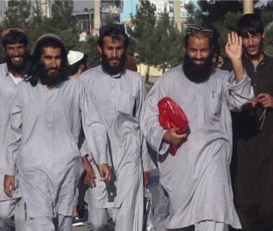 «Талибан» қозғалысын террористік ұйым қатарынан шығаруды сұраған Ресей ұсынысына Қазақстан үнсіз
